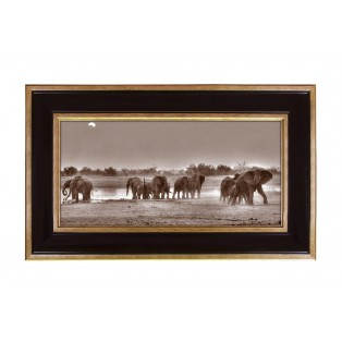 Obraz Savanna Elephants - MY HONEY HOME